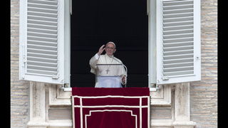Pope insists pedophile criminals be