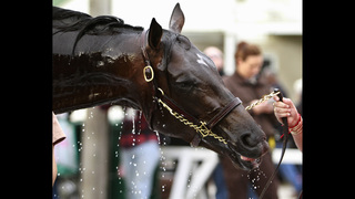 22 horses entered for Kentucky Derby; field limited to 20