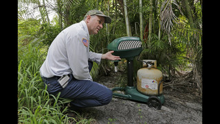 As Zika spreads, Florida town a study in bug-borne illness