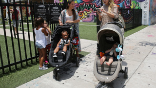 More bug spray, less dining al fresco planned in Zika zone