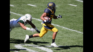 Webb solid in Cal debut, Bears beat Hawaii 51-31 Down Under