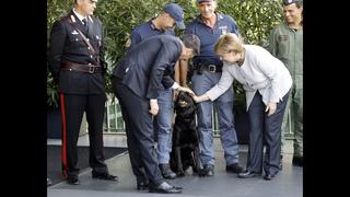 The Latest: Merkel greets Italy quake rescue teams, dog