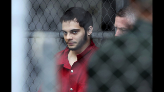 Airport shooting suspect blamed