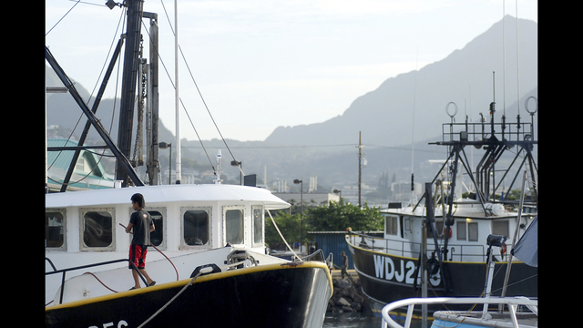 Hawaii bill targeting commercial fishing industry in for Florida commercial fishing license
