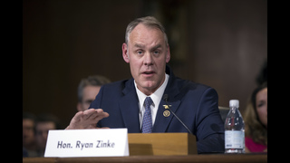 Montana governor calls for May 25 election to replace Zinke