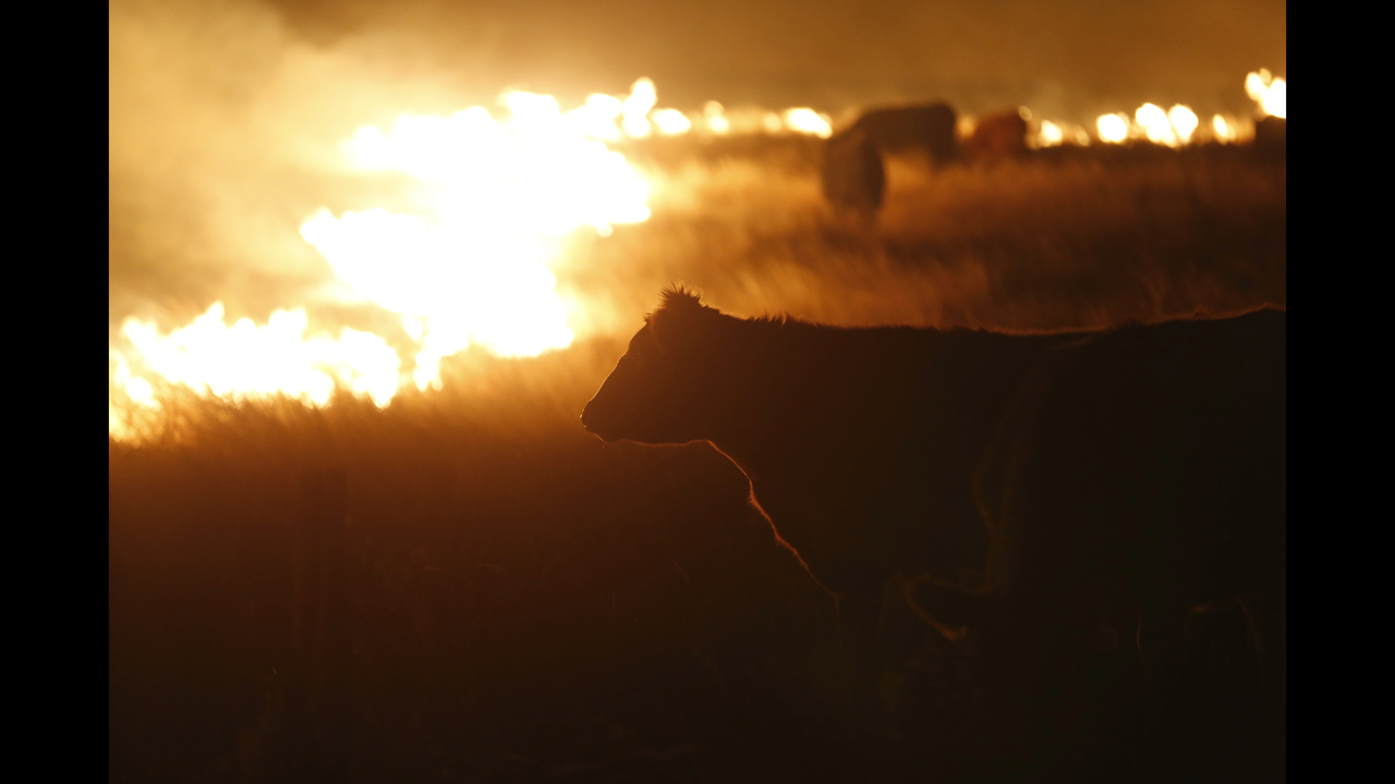 The Latest: Wildfires kill 3 ranch hands in rural Texas