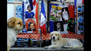 Ooh la la! Cypriot renews Platini memorabilia record bid