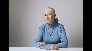 Jane Goodall: Magic of nature revealed in