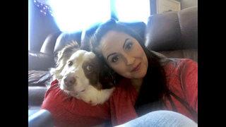 Utah dog that bit girl wins reprieve, won