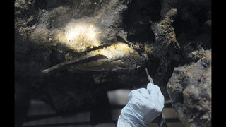 Museum to discuss efforts to see if bones belong to pirate