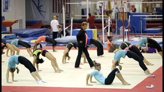 US gymnasts say sport rife with verbal and emotional abuse
