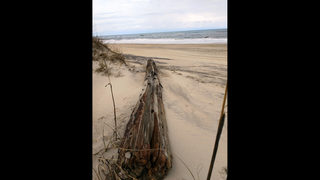 Shipwreck exposed on Outer Banks could be a century old