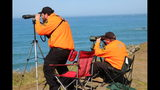 Volunteers with the Mendocino County Sheriff's Office Search and Rescue team searches the waters off the coast using a telescope near Mendocino, Calif. on Thursday, March 29, 2018 for any signs of the three children who remain missing after a mysterious wreck now under investigation. Investigators have yet to determine the cause of the Monday crash. (Kale Williams/The Oregonian via AP)