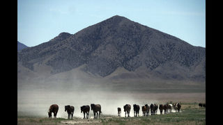Drought forces emergency measures for US West
