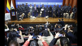 Colombia retires sniffer dogs in emotional ceremony