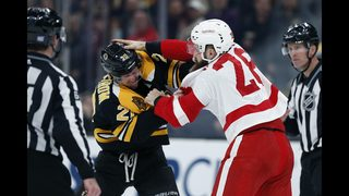 Nielsen, Howard help Red Wings beat Bruins