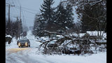 A tree rests on a vehicle, Sunday, Feb. 10, 2019, on a residential street in Tacoma, Wash. Pacific Northwest residents who are more accustomed to rain than snow were digging out from a big winter storm over the weekend and bracing for more snow forecast for Sunday. (AP Photo/Ted S. Warren)