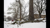 Tree branches lie on the ground Thursday, April 11, 2019, in Sioux Falls, S.D. Heavy snow and strong winds hammered parts of the central U.S. on Thursday, knocking out power to tens of thousands of people and creating hazardous travel conditions a day after pummeling Colorado. (Briana Sanchez/The Argus Leader via AP)