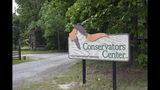 In this May 4, 2019 photo, the entrance to The Conservators Center in Burlington, N.C., is open for visitors. The park re-opened in February 2019 after an intern was mauled to death by a lion that escaped its inclosure in December 2018. ( AP Photo/Amanda Morris)