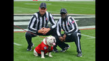 In this April 20, 2019, photo, officials Phillip Davenport, left, and Grantis Bell pose with Georgia mascot Uga, Georgia's spring NCAA college football game in Athens, Ga. Imagine trying to teach someone who has never driven a car to do it well enough so the very next day the neophyte can spend 2 hours operating a cab in New York City without causing an accident. The lesson will last around 90 minutes. That's about what Tom Quick, Grantis Bell, Phillip Davenport and five other veteran college football officials signed up to do. (Gary McGriff via AP)