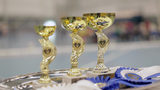 Awards stand on a tray ahead of the awarding ceremony of the 8th Hobby Horse championships in Seinajoki, Finland, on Saturday, June 15, 2019. More than 400 hobby horse enthusiasts took part in the show, competing on stylish toy horses in various events inspired by real equestrian events. (AP Photo/from APTN Video)