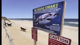 FILE - In this May, 22, 2019, file photo, a woman walks with her dogs at Newcomb Hollow Beach, where a boogie boarder was bitten by a shark in 2018 and later died of his injuries, in Wellfleet, Mass. Researchers on Cape Cod are launching a new study focused on the hunting and feeding habits of the region's great white sharks following two attacks on humans in 2018, including the state's first fatal one in more than 80 years. (AP Photo/Charles Krupa, File)