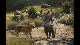 """El joven Simba, con la voz de JD McCrary, Timón, con la voz de Billy Eichner, y Pumba, con la voz de Seth Rogen en una escena de """"El Rey León"""" en una imagen proporcionada por Disney. (Disney vía AP)"""