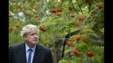Conservative Party leadership candidate Boris Johnson during a visit to King & Co tree nursery, in Braintree, Essex, ahead of a Tory leadership hustings, England, Saturday, July 13, 2019. (Neil Hall/Pool photo via AP)