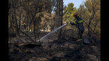 A firefighter hoses down a wildfire in the town of Rafina, near Athens, on Tuesday, July 23, 2019. A forest fire outside Athens is threatening homes on the anniversary of a deadly blaze in the same area that claimed more than 100 lives. (AP Photo/Petros Giannakouris)