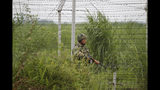 An Indian Border Security Force (BSF) soldier patrols near the India Pakistan border fencing at Garkhal in Akhnoor, about 35 kilometers (22 miles) west of Jammu, India, Tuesday, Aug.13, 2019. Pakistan has denounced India's actions to change the special status of the disputed Himalayan region of Kashmir and has downgraded its diplomatic ties with New Delhi. (AP Photo/Channi Anand)