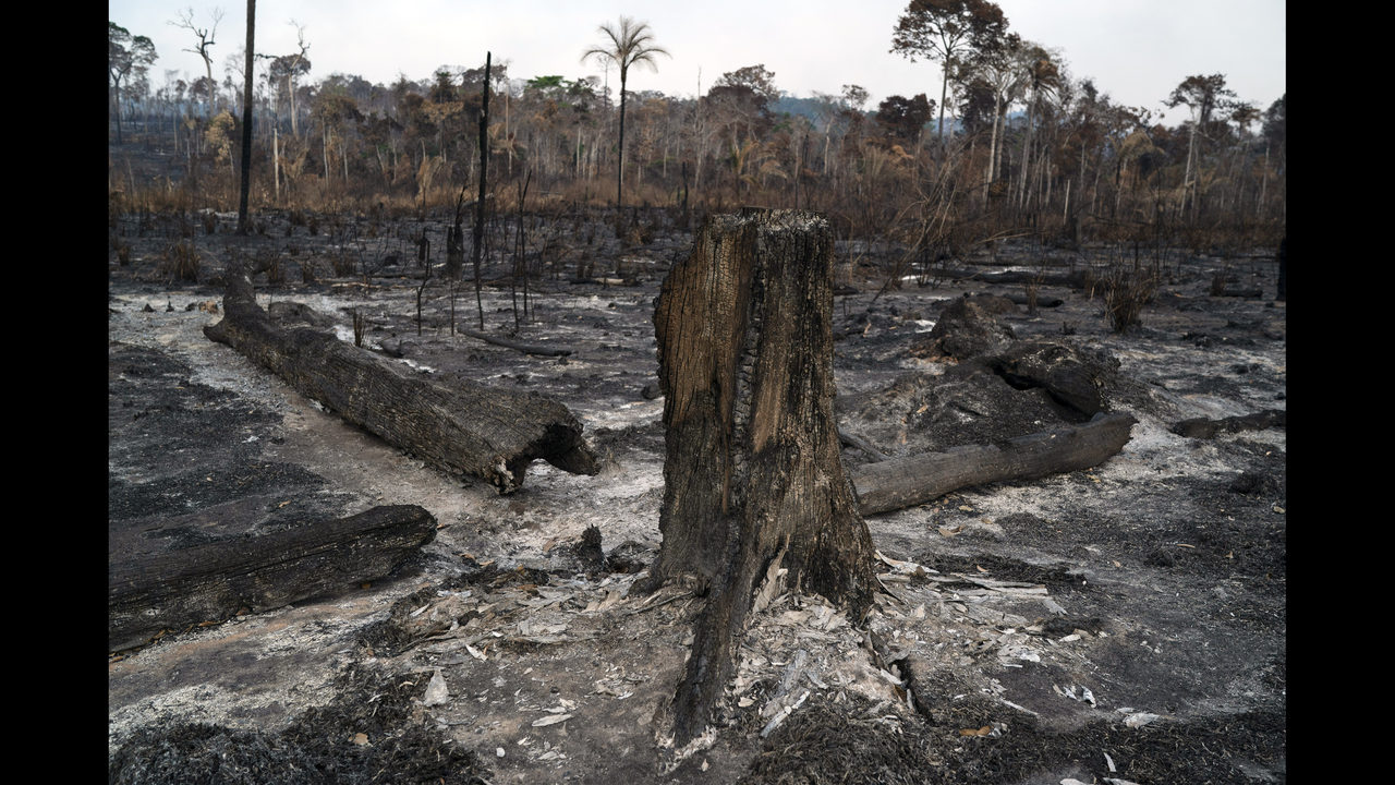 ee30a6165055b Brazil's Bolsonaro causes global outrage over Amazon fires   WFTV