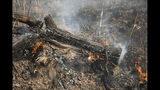 Árboles quemados por un incendio forestal a un costado de la autopista BR 070 cerca de Cuiaba, en el estado de Mato Grosso, Brasil, el domingo 25 de agosto de 2019. (AP Foto/Andre Penner)