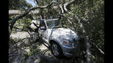 A tree brings smashes a car after Hurricane Dorian passed by James Island, S.C., Friday, Sept. 6, 2019. (AP Photo/Mic Smith)