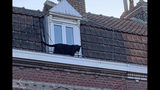 This provided provided by the Fire Brigade of Northern France a panther walks on the gutter of a building in Armentieres, northern France, Wednesday Sept.18, 2019. After securing a perimeter around the danger zones, the fire service said the black panther luckily went inside one of the houses that enabled workers to be able to trap it. The animal was put to sleep thanks to a harmless dart, and promptly put in a cage. (Sapeurs-Pompiers du Nord via AP)