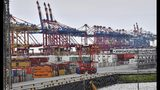 In this Thursday, May 16, 2019 photo, containers are stored in the free harbor in Bremerhaven, Germany. The German government says the country's economy is in a weak phase but it doesn't currently see indications it will enter a long-term recession. (AP Photo/Martin Meissner)