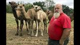 En esta imagen del 7 de octubre de 2019, Scott Allen, que dirige Pettit Creek Farms en el condado de Bartow, posa para una foto. Allen señala que los pequeños arroyos de la zona que suelen proporcionar el agua para sus camellos, canguros, cebras y otros animales se han secado, de modo que están obligados a buscar otras fuentes de agua. Allen señaló que los animales están bien, pero el polvo es una molestia constante porque no ha llovido de forma significativa en los últimos dos meses. (AP Foto/Jeff Martin) (AP Foto/Jeff Martin)