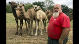 In this Oct. 7, 2019 photo, Scott Allen, who runs Pettit Creek Farms in bone-dry Bartow County, Ga., poses for a photo. Allen says the small streams normally used to provide water for his camels, kangaroos, zebras and other animals have dried up so they are forced to rely on other water sources. Allen says the animals are fine, but the dust is relentless since there's been no significant rain during the past two months. (AP Photo/Jeff Martin) (AP Photo/Jeff Martin)