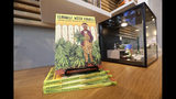 In this Wednesday, Oct. 9, 2019 photo, a book about growing pot is displayed for sale at the Village Bloomery, a marijuana retail shop, in Vancouver, B.C. Many people in British Columbia still grow their own marijuana or have friends who do. In Vancouver alone, about 100 dispensaries operated in Vancouver before legalization arrived. (AP Photo/Elaine Thompson)