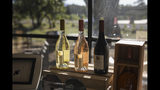 Wine bottles sit in a boutique shop in Le Cannet-des-Maures, in the Provence region, Thursday Oct. 10, 2019. European producers of premium specialty agricultural products like French wine, are facing a U.S. tariff hike on Friday, with dollars 7.5 billion duties on a range of European goods approved by the World Trade Organization for illegal EU subsidies to aviation giant Airbus.(AP Photo/Daniel Cole)