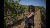 A worker tends to a vineyard after a recent harvest in the southern France region of Provence, Friday Oct. 11, 2019. European producers of agricultural products like French wine, are facing a U.S. tariff hike on Friday, because of illegal EU subsidies to the aviation giant Airbus, with dollars 7.5 billion duties on a range of European goods selectively chosen to hit premium specialty items.(AP Photo/Daniel Cole)
