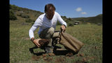 Les Ansley collects fresh elephant dung in the Botlierskop Private Game Reserve, near Mossel Bay, South Africa, Tuesday, Oct. 24, 2019. The makers of a South African gin infused with elephant dung swear their use of the animal's excrement is no gimmick. The creators of Indlovu Gin, Les and Paula Ansley, stumbled across the idea a year ago after learning that elephants eat a variety of fruits and flowers and yet digest less than a third of it. (AP Photo/Denis Farrell)