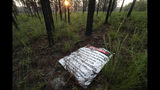 A sign warns about the dangers of a firing range in a long leaf pine forest at Fort Bragg in North Carolina on Tuesday, July 30, 2019. Frequent prescribed burns keep the undergrowth in check, restoring the forest to habitat the endangered red-cockaded woodpecker once thrived in before natural fires were suppressed by settlers. (AP Photo/Robert F. Bukaty)