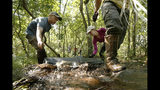 Research assistants David Pavlik, left, and Emily Price, roll out an inflatable rubber dam in an effort to create habitat suitable for the rare St. Francis' satyr butterfly, at Fort Bragg in North Carolina on Tuesday, July 30, 2019. The butterflies prefer wet meadows created by beavers. (AP Photo/Robert F. Bukaty)