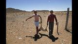 En esta imagen del jueves 14 de noviembre de 2019, niños cargando un cordeo muerto propiedad de la ganadera Gertruida Buffel en Vosburg, Sudáfrica. Once millones de personas afrontan inseguridad alimentaria debido a la peor sequía que han visto algunos campesinos en décadas en buena parte del sur de África. (AP Foto/Denis Farrell)