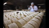 FILE - In this Jan. 21, 2009, file photo, Bernard Roques, a refiner of Societe company, smells a Roquefort cheese as they mature in a cellar in Roquefort, southwestern France. The Trump administration is proposing tariffs on up to $2.4 billion worth of French imports, from Roquefort cheese to handbags, retaliation for France's tax on American tech giants like Google, Amazon and Facebook. The Office of the U.S. Trade Representative says France's new digital services tax discriminates against U.S. companies and says that the tariffs could reach 100%.(AP Photo/Bob Edme, File)
